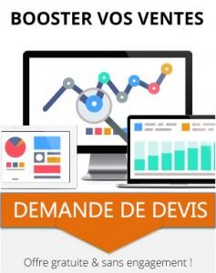 qcm DEMAMDER DEVIS SITE WEB