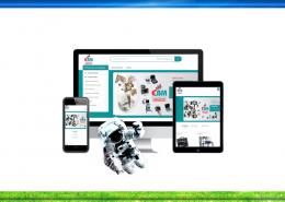 création site web ebmmaroc